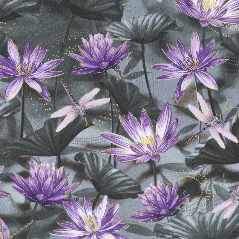 Dragonfly Dance Purple Water Lily Pool Black Purple