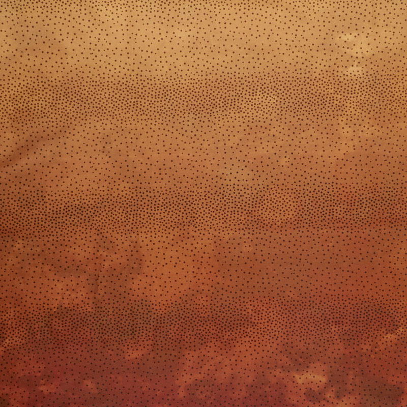 Diaphanous - Ombre Spice Digitally Printed Yardage