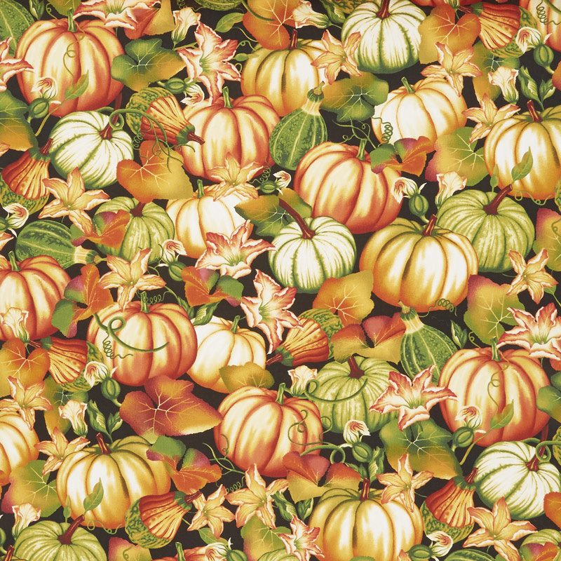 Autumn Time - Pumpkin Patch Black Yardage