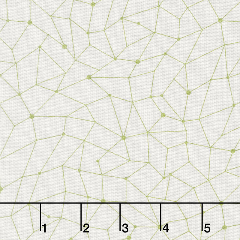 Modern Backgrounds Colorbox - Net Fog Fern Yardage
