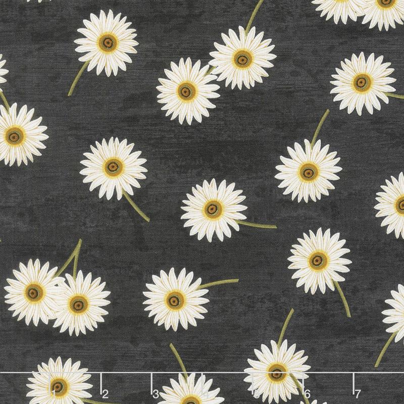 Sunset Blooms - Daisies Black Yardage