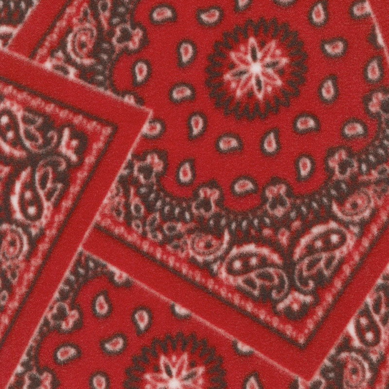 Winterfleece Prints Conversational - Bandana Red Fleece Yardage