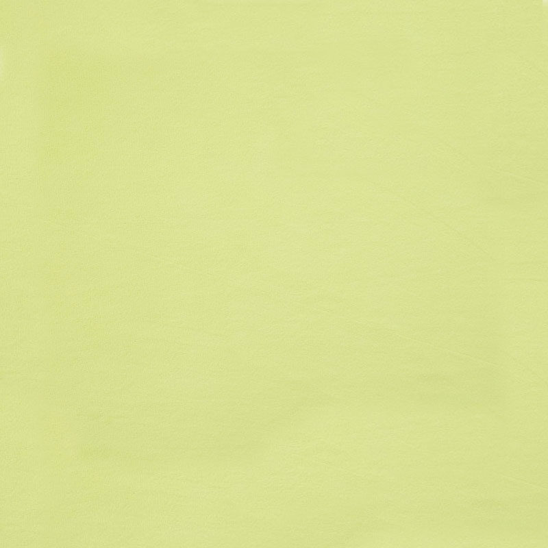 Cuddle® Solids - Apple Green 60