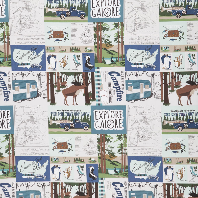 Gone Camping - Main Teal Yardage