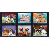 Somebody to Love - Puppies Multi Digitally Printed Panel