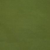 Cotton Supreme Solids - Bowood Green Yardage