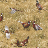 Animals - Wild Pheasants Ginger Yardage