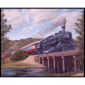 Locomotion - Train Brown Panel