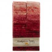 Stonehenge Gradations Brights - Hibiscus Strips