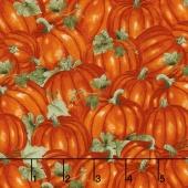 Colors of Fall - Packed Pumpkins Burnt Orange Yardage