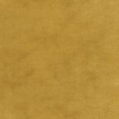 Primitive Muslin Flannel - Saffron Yardage