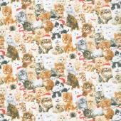 Fireside Kittens - Packed Kittens Allover Cream Yardage