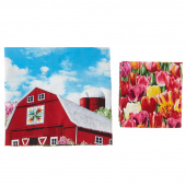 Tulip Farm Bundle