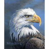 Wild and Beautiful - Eagle Panel