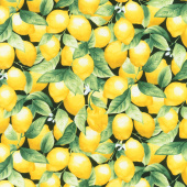 Splash of Lemon - Packed Lemons Black Yardage