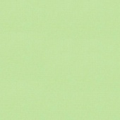 Bella Solids - Green Tea Yardage
