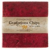 Stonehenge Gradations Brights - Hibiscus Chips