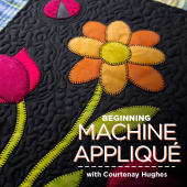 buy quilting product Beginning Machine Appliqué ECLASS0005