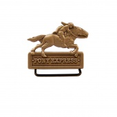 Pony Express Collectible Pin Holder