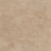 Primitive Muslin Flannel - Oatmeal Yardage