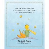 The Little Prince - Prince Aqua Digitally Printed Panel