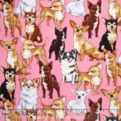 Dogs - Chihuahuas Pink Yardage