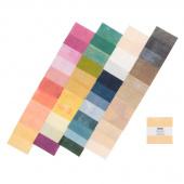 Grunge Basics New Colors 2018 Mini Charm Pack