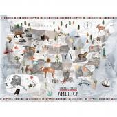 Coast to Coast - USA Gray Digitally Printed Panel