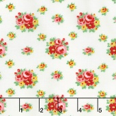 Love & Friendship - Love's Bouquet Cloud Yardage