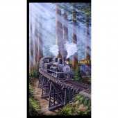 Redwood Express - Train Gray Panel
