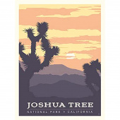 National Parks - Joshua Tree Poster Panel