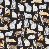 Cats - Realistic Cats Black Yardage