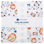 "Take Me Home Cats 10"" Squares"