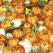 Autumn Bounty - Pumpkins & Gourds Pumpkin Metallic Yardage