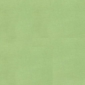 Bella Solids - Betty Green Yardage