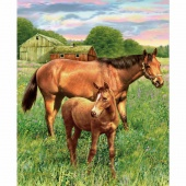 Hold Your Horses - Horses Mare and Foal Digitally Printed Panel