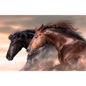 Maverick - Mustang Multi Digitally Printed Panel