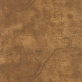 "Urban Legend - Tonal Texture Tan 108"" Wide Backing"