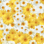 Oops A Daisy - Field of Daisies Yellow/White Yardage