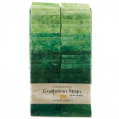 Stonehenge Gradations Brights - Rainforest Strips