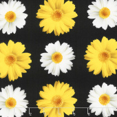 Oops A Daisy - Window Daisy Black Yardage