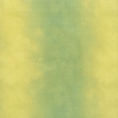 Wilmington Essentials - Ombre Washart Avocado Yardage