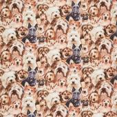 Animals - Packed Puppies Multi Yardage