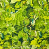 Flowers of the Sun - Large Leaves Green Yardage
