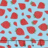 Farm Fresh - Strawberry Patch Sky Yardage