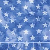 Freedom Batiks - Stars Blue & White Yardage