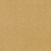 "Kansas Troubles Favorites - Tan 108"" Quilt Backing"