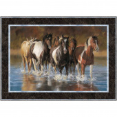 Mustang Creek Kit