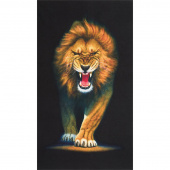 Animal Kingdom - Lion Wild Digitally Printed Panel