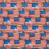 We the People - Packed Flags Multi Yardage